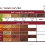 La coloration végétale végétale de Logona : une coloration trèèèèèès naturelle…