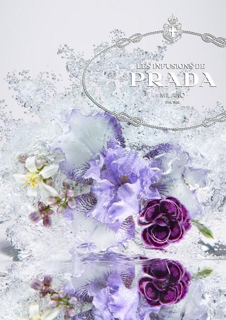 infusions_prada
