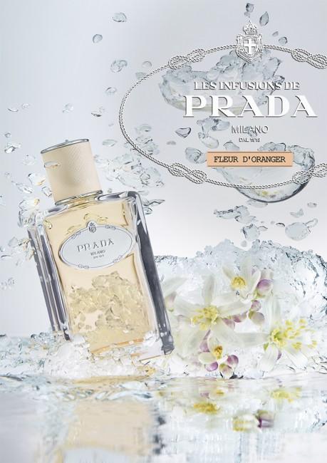 prada_fleur_oranger