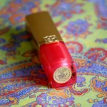 RAL Pure Color Estée Lauder : ma trouvaille des soldes !